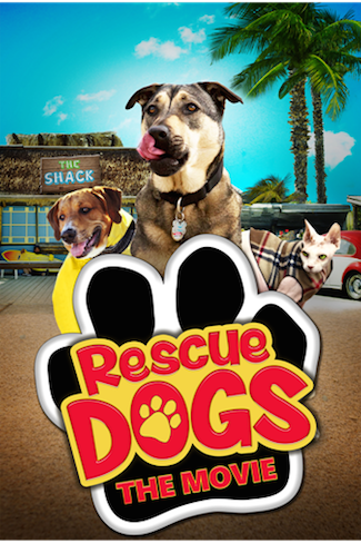Rescue-Dogs