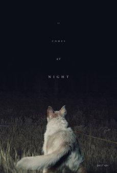 It-Comes-at-Night-2017