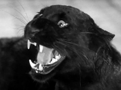 catpeople-1944
