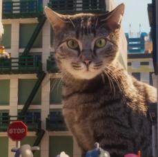 lego-ninjago-cat-550x227