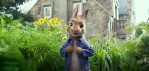 peter-rabbit2