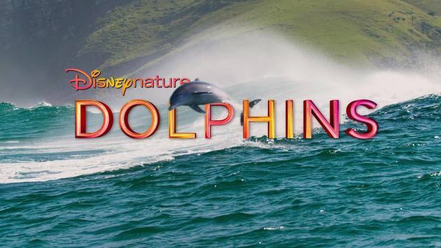 disneynature-dolphins