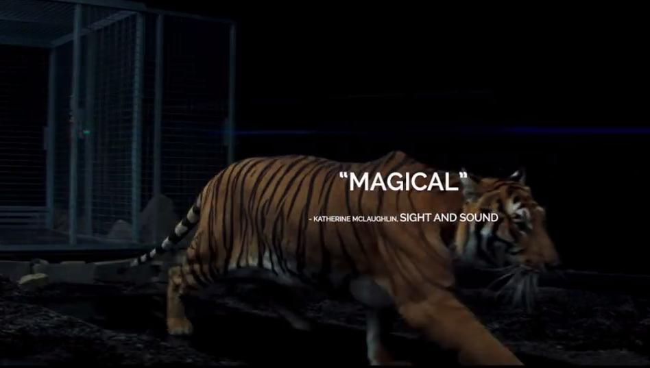 mandy.tiger