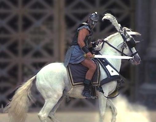 gladiator-white-horse