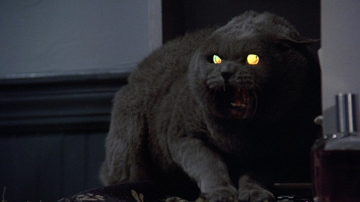 pet-sematary-church-the-cat