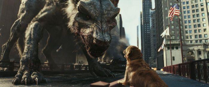 dog-rampage.jpg